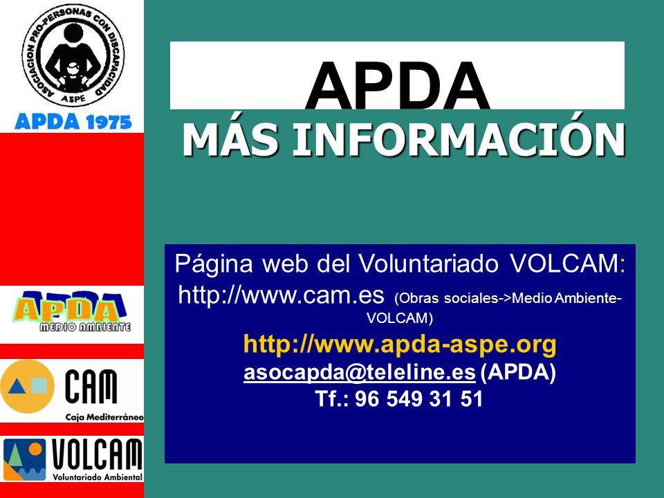 asocapda@teleline.es (APDA)