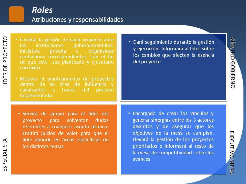 Roles Atribuciones y responsabilidades