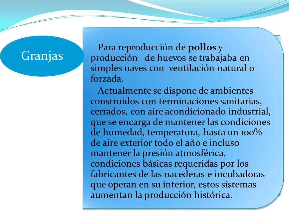 Granjas Para reproducción de pollos y producción de huevos se trabajaba en simples naves con ventilación natural o forzada.