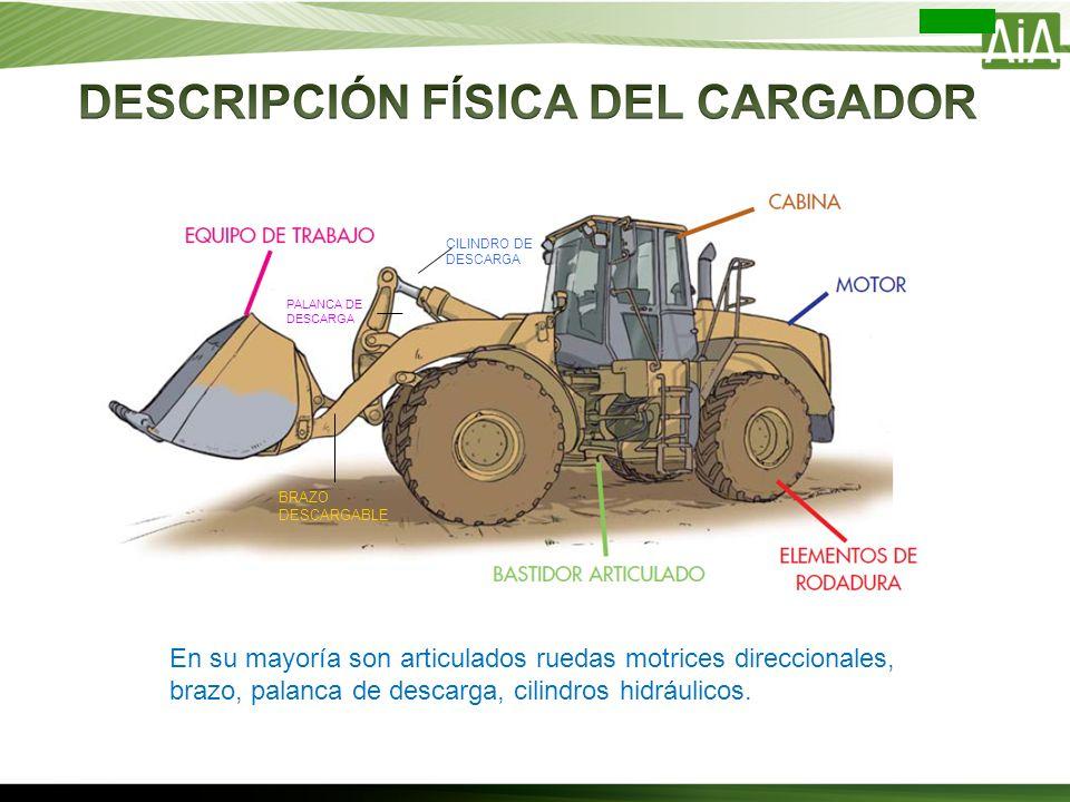 DESCRIPCIÓN FÍSICA DEL CARGADOR