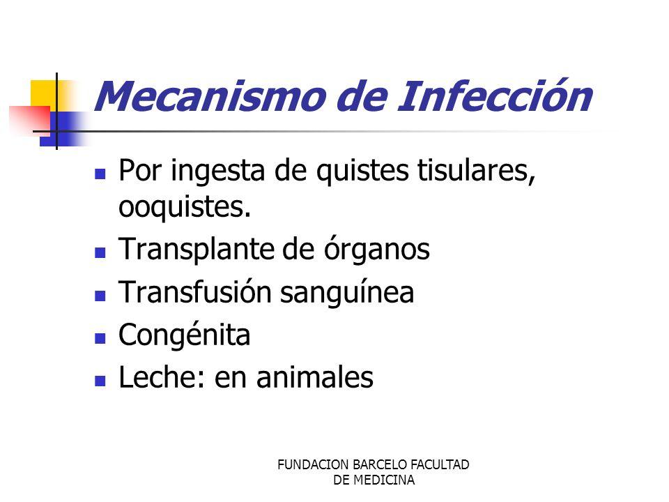 Mecanismo de Infección