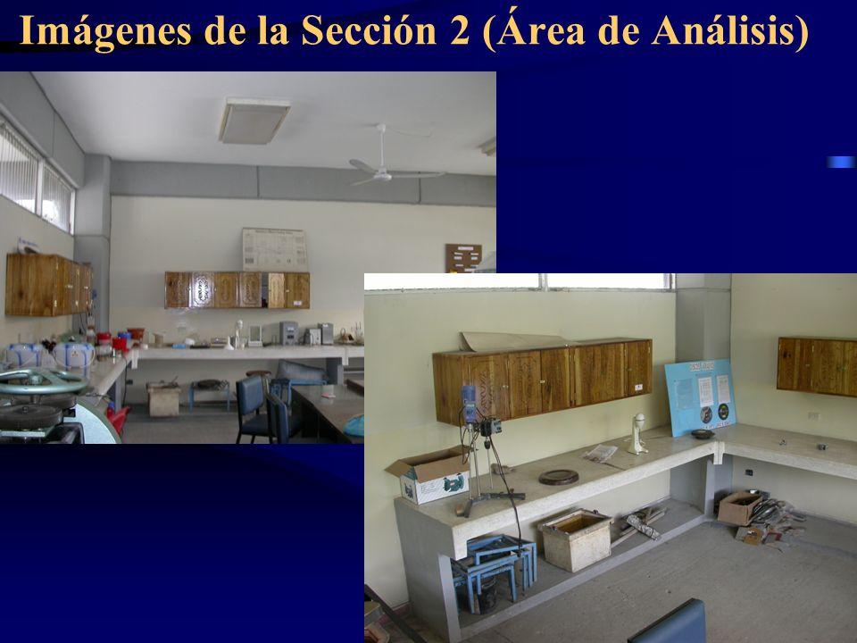 Imágenes de la Sección 2 (Área de Análisis)