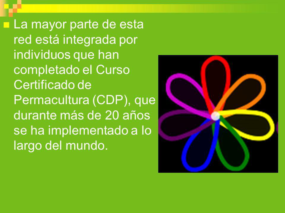 La mayor parte de esta red está integrada por individuos que han completado el Curso Certificado de Permacultura (CDP), que durante más de 20 años se ha implementado a lo largo del mundo.