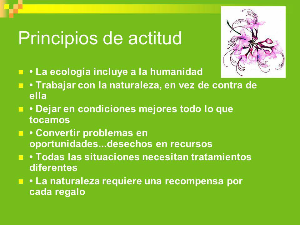 Principios de actitud • La ecología incluye a la humanidad