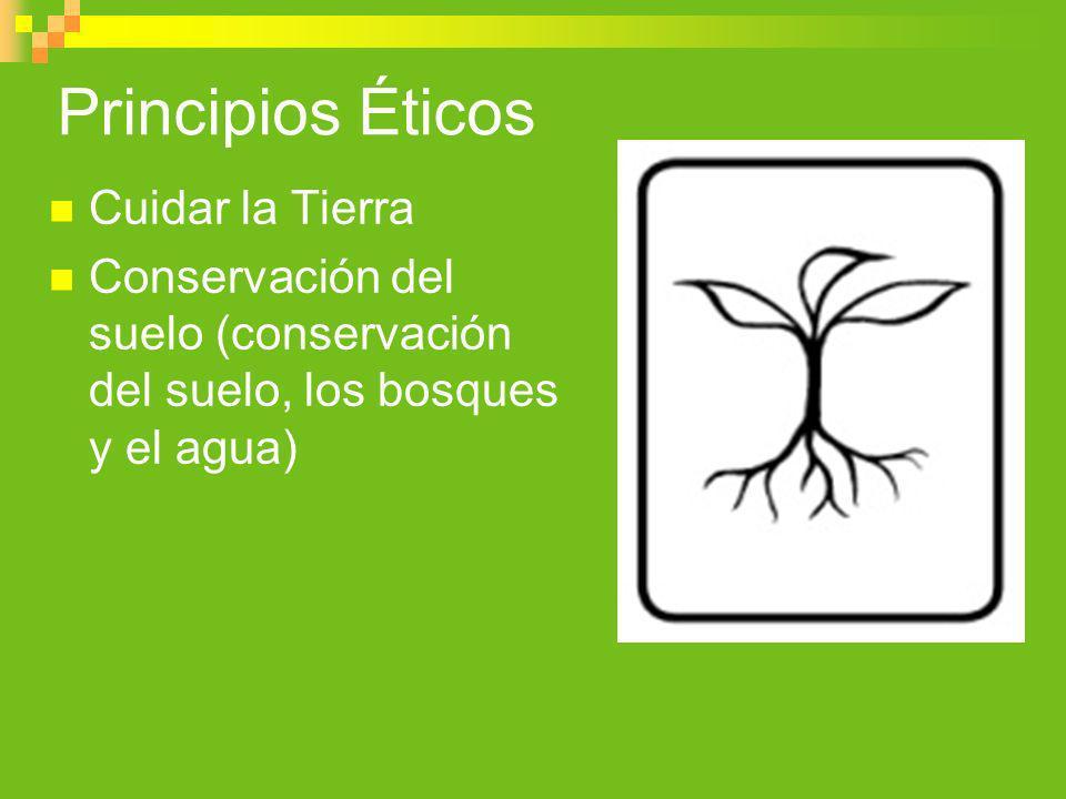 Principios Éticos Cuidar la Tierra