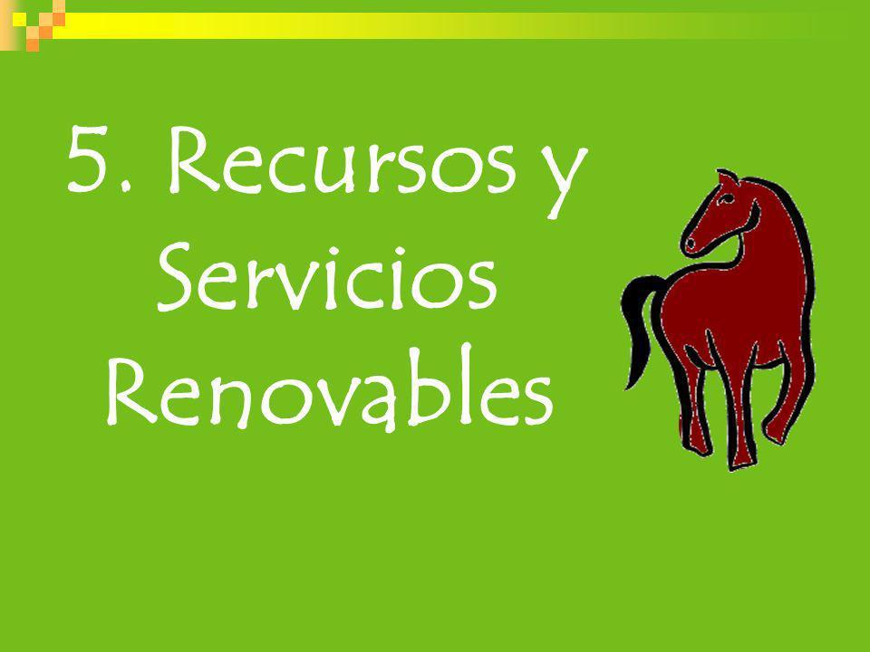 5. Recursos y Servicios Renovables