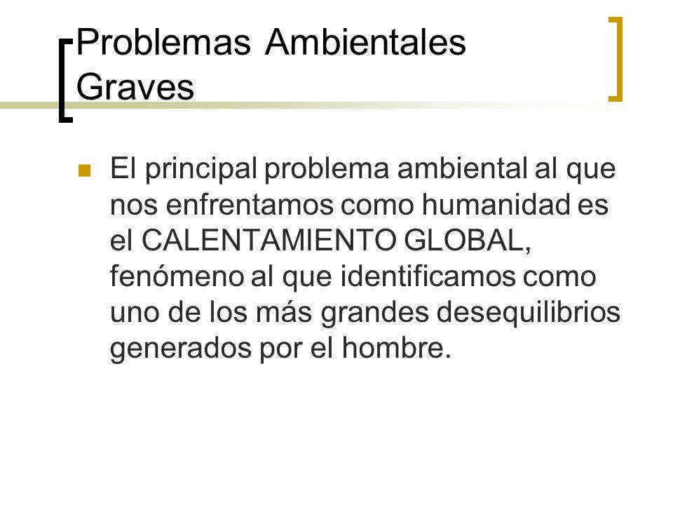 Problemas Ambientales Graves