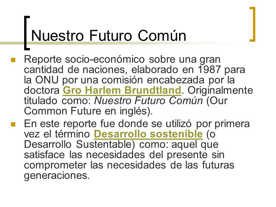 Nuestro Futuro Común