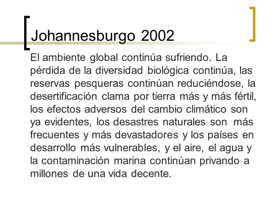 Johannesburgo 2002