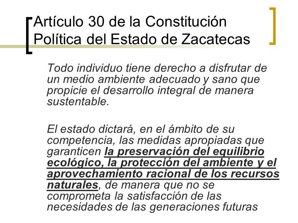 Artículo 30 de la Constitución Política del Estado de Zacatecas