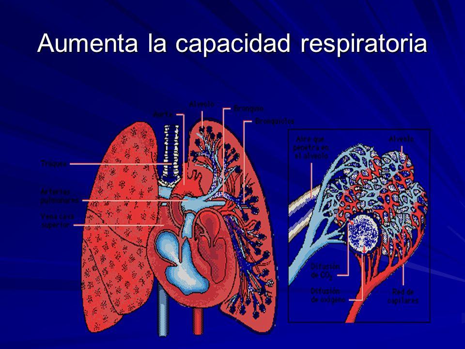 Aumenta la capacidad respiratoria