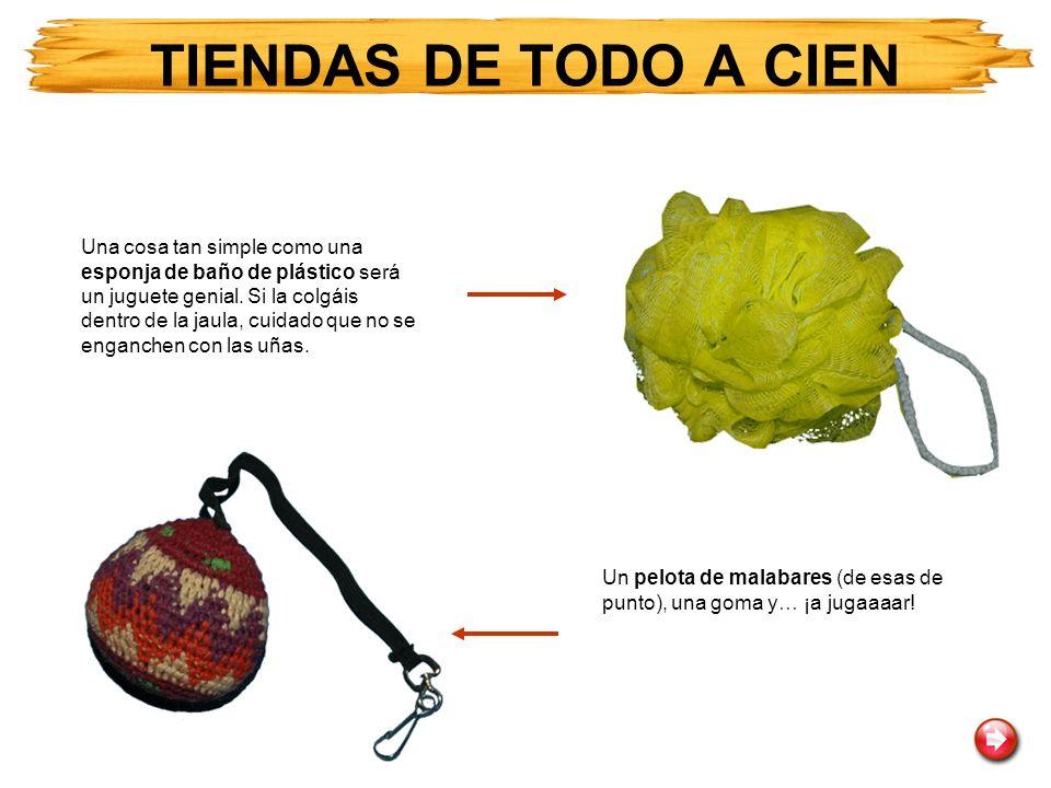 TIENDAS DE TODO A CIEN