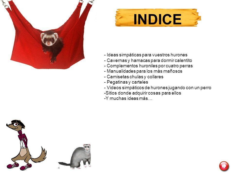 INDICE - Ideas simpáticas para vuestros hurones