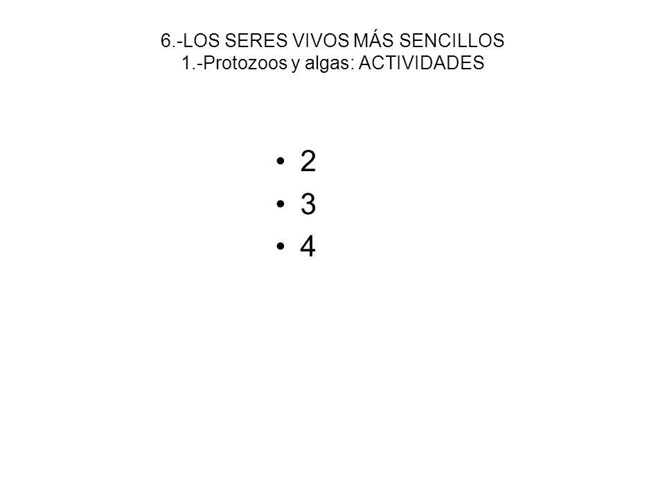 6.-LOS SERES VIVOS MÁS SENCILLOS 1.-Protozoos y algas: ACTIVIDADES
