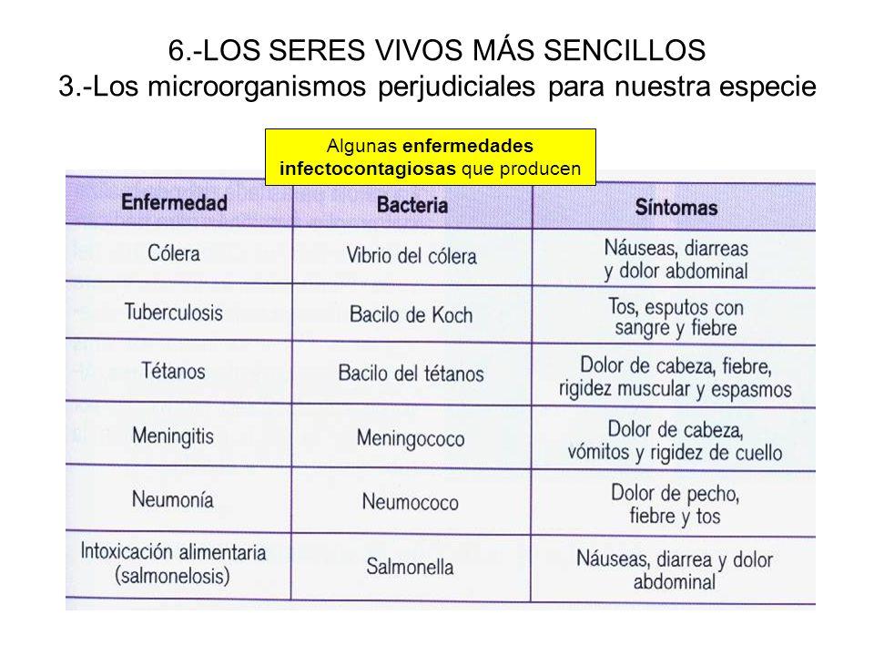 Algunas enfermedades infectocontagiosas que producen
