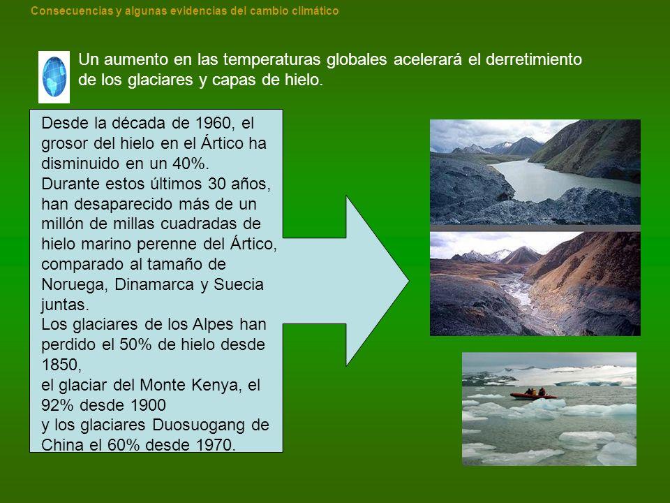 Los glaciares de los Alpes han perdido el 50% de hielo desde 1850,