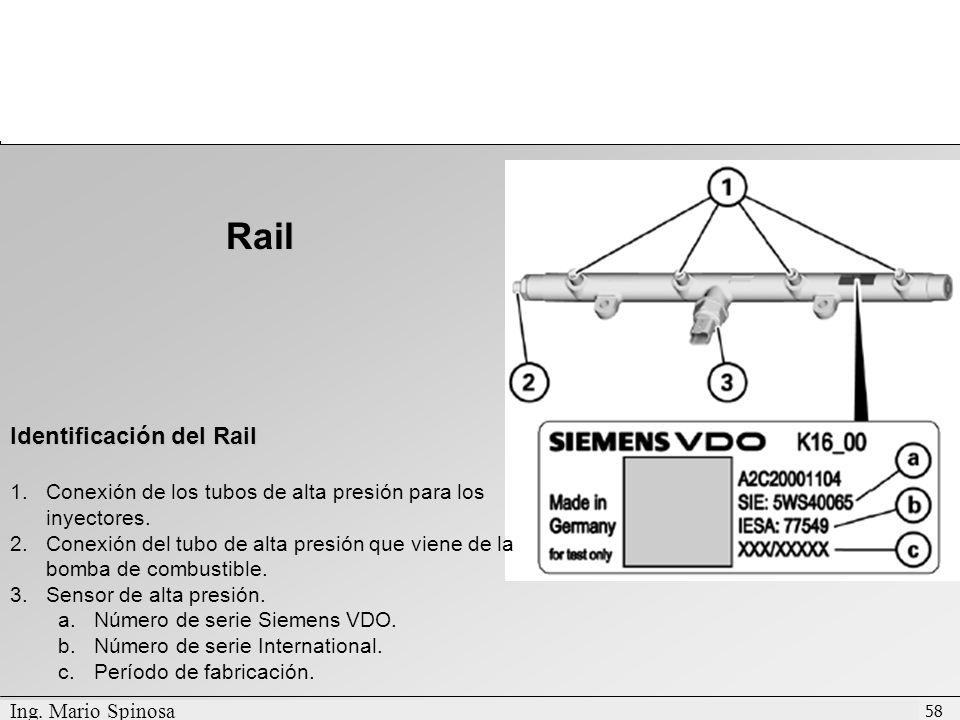 Rail Identificación del Rail