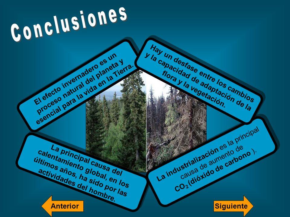 Conclusiones Hay un desfase entre los cambios y la capacidad de adaptación de la flora y la vegetación.