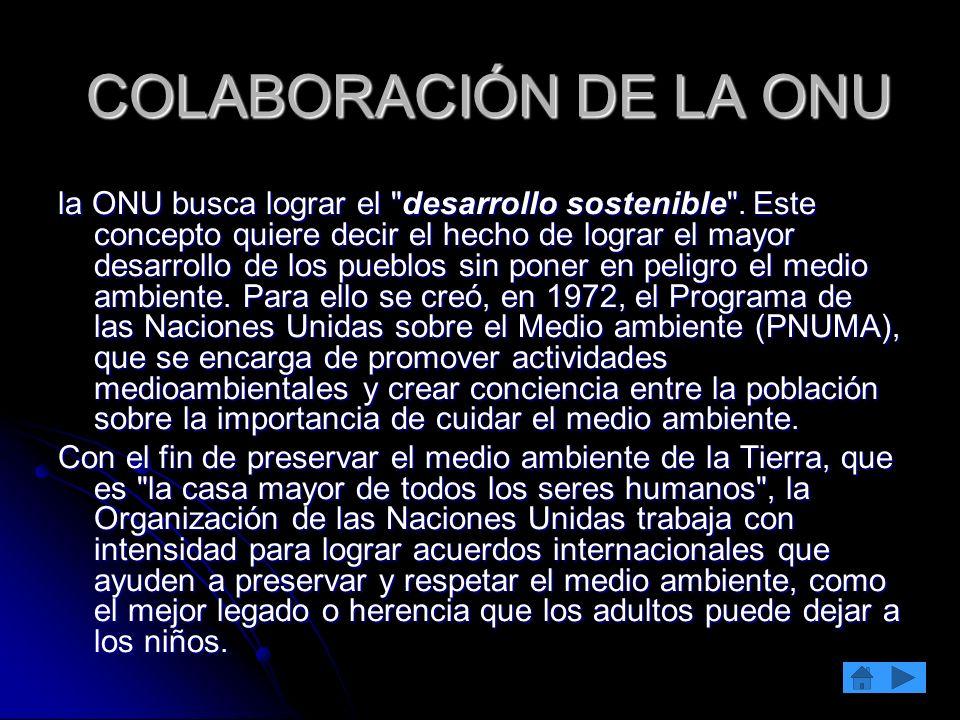 COLABORACIÓN DE LA ONU