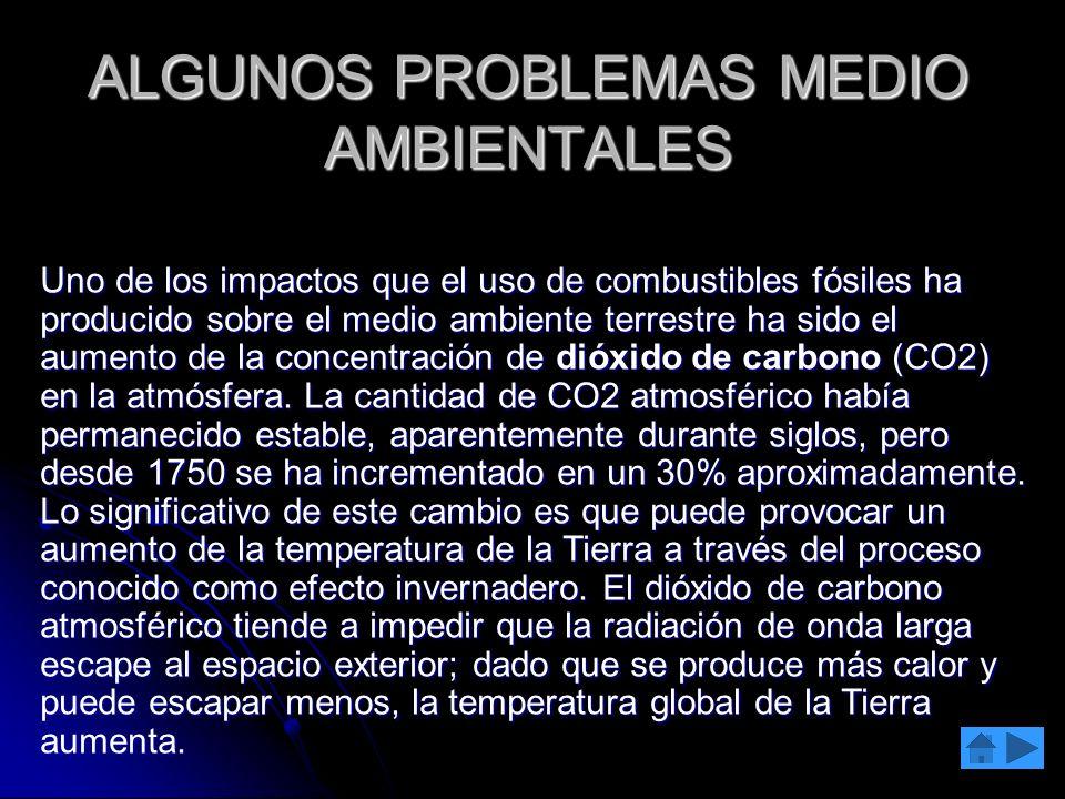 ALGUNOS PROBLEMAS MEDIO AMBIENTALES