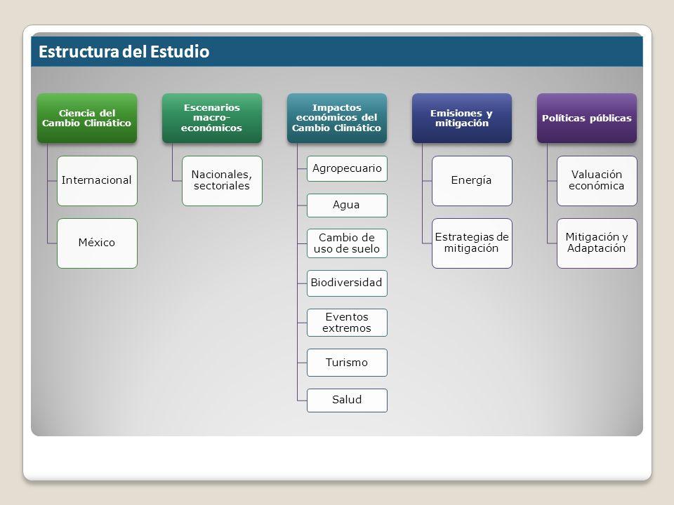 Estructura del Estudio