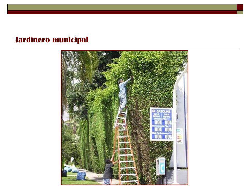 Jardinero municipal