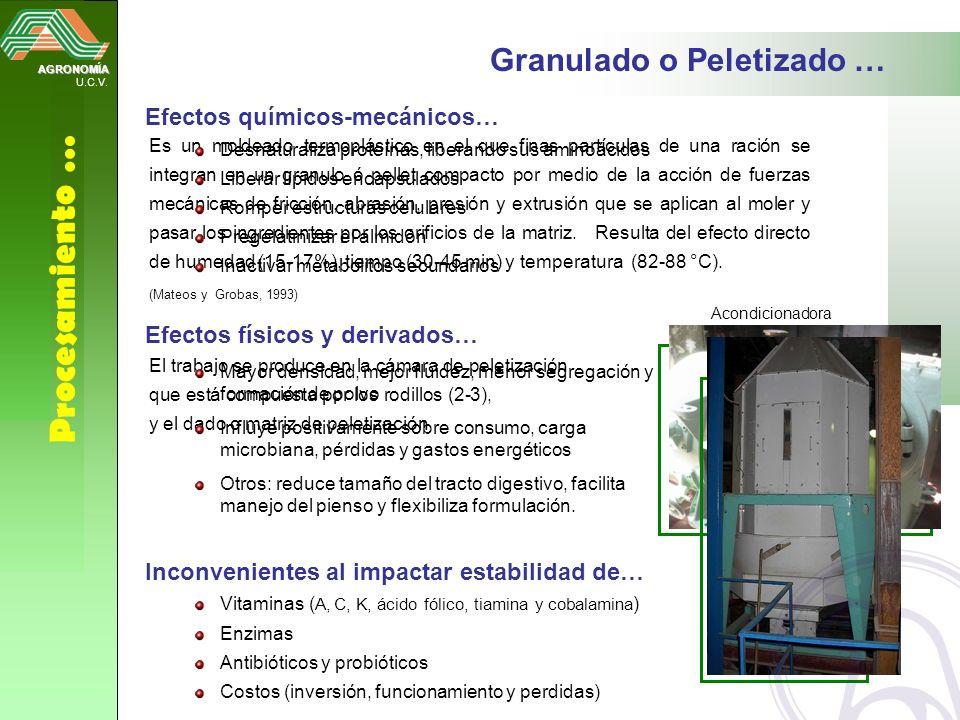 Procesamiento … Granulado o Peletizado … Efectos químicos-mecánicos…
