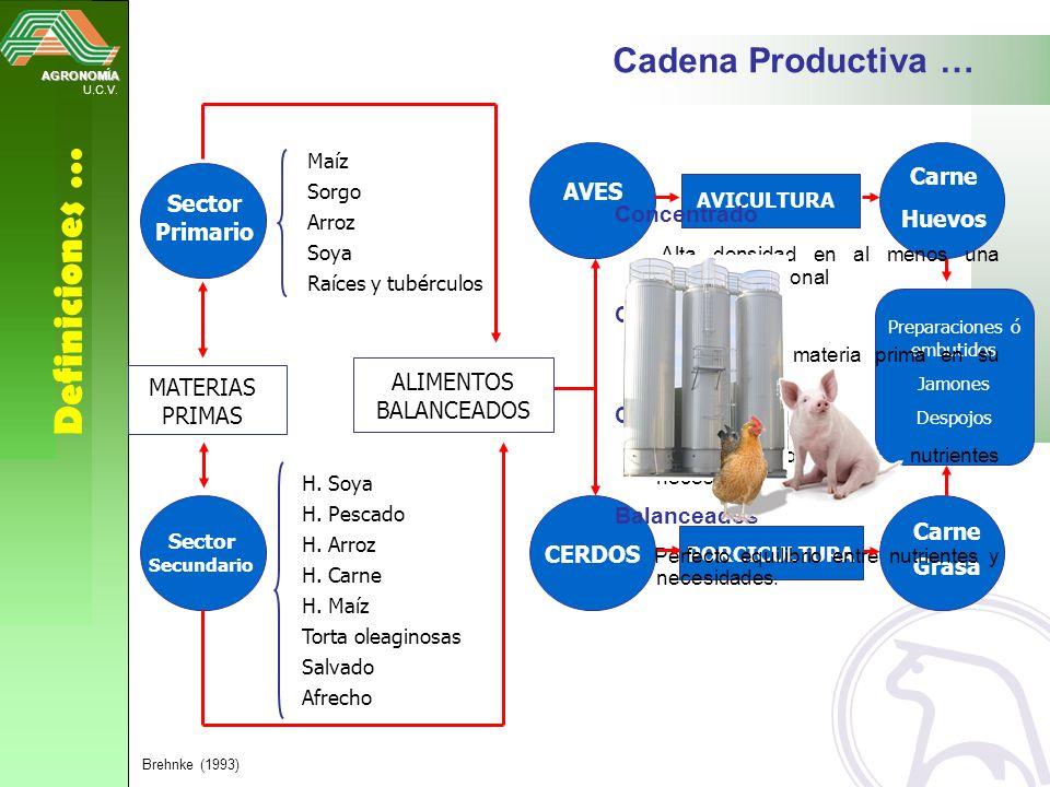 Definiciones … Cadena Productiva … Carne AVES Huevos Sector Primario