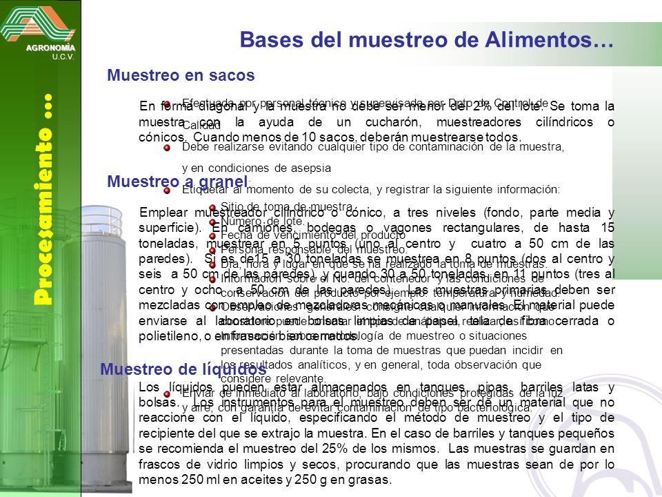 Procesamiento … Bases del muestreo de Alimentos… Muestreo en sacos