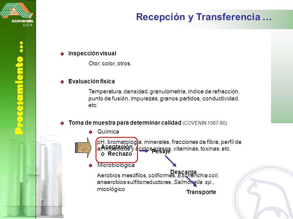Procesamiento … Recepción y Transferencia … Inspección visual