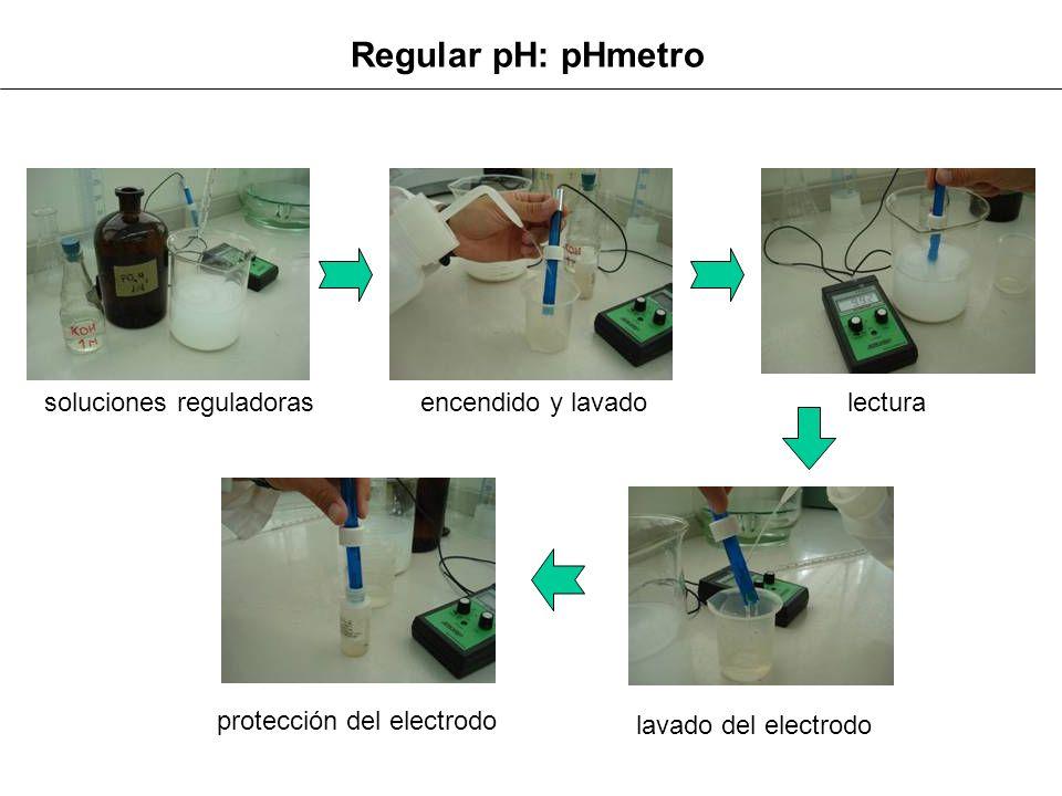 Regular pH: pHmetro encendido y lavado lectura soluciones reguladoras