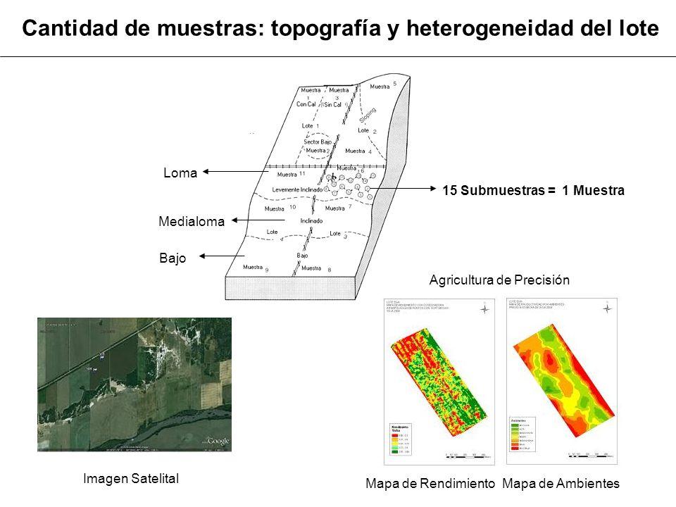 Cantidad de muestras: topografía y heterogeneidad del lote