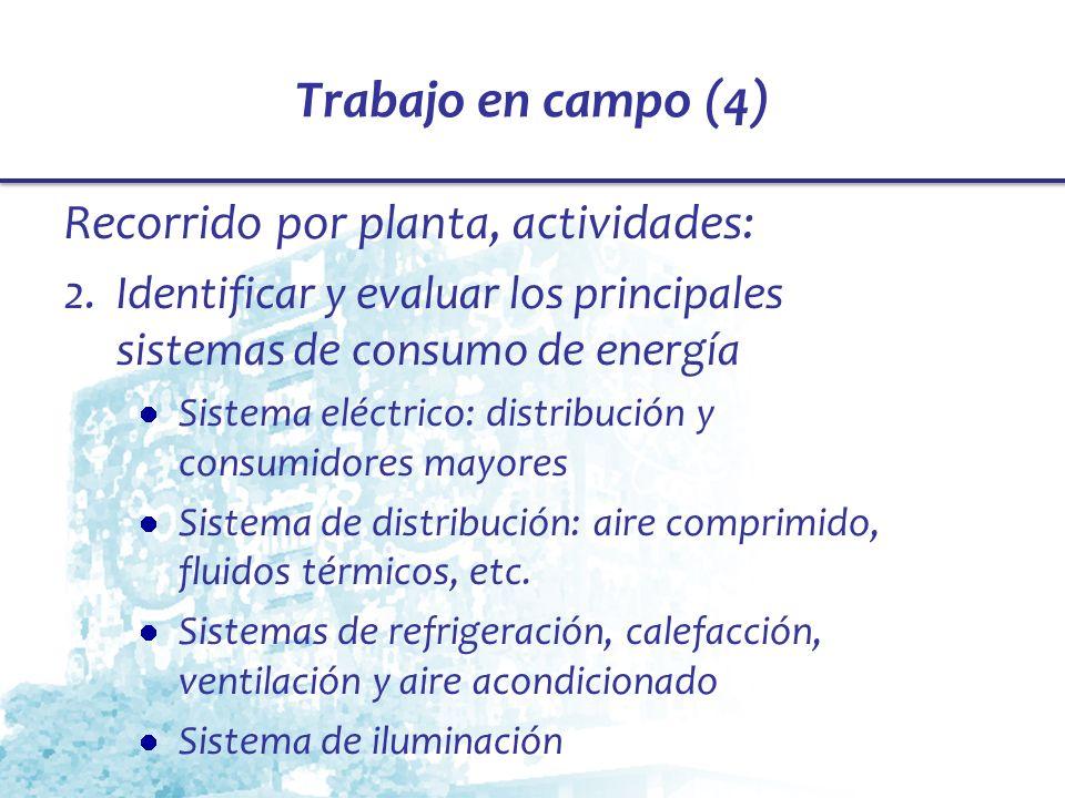 Trabajo en campo (4) Recorrido por planta, actividades: