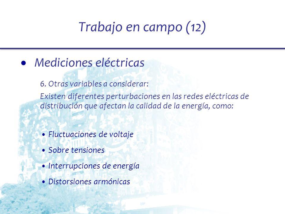 Trabajo en campo (12) Mediciones eléctricas