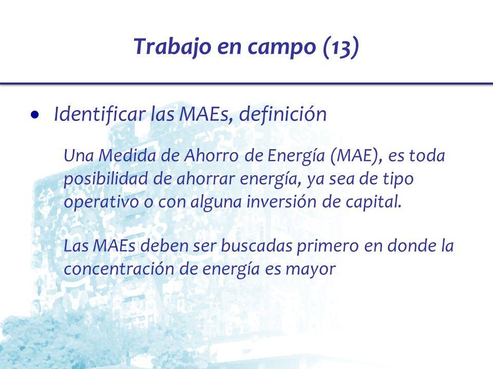 Trabajo en campo (13) Identificar las MAEs, definición