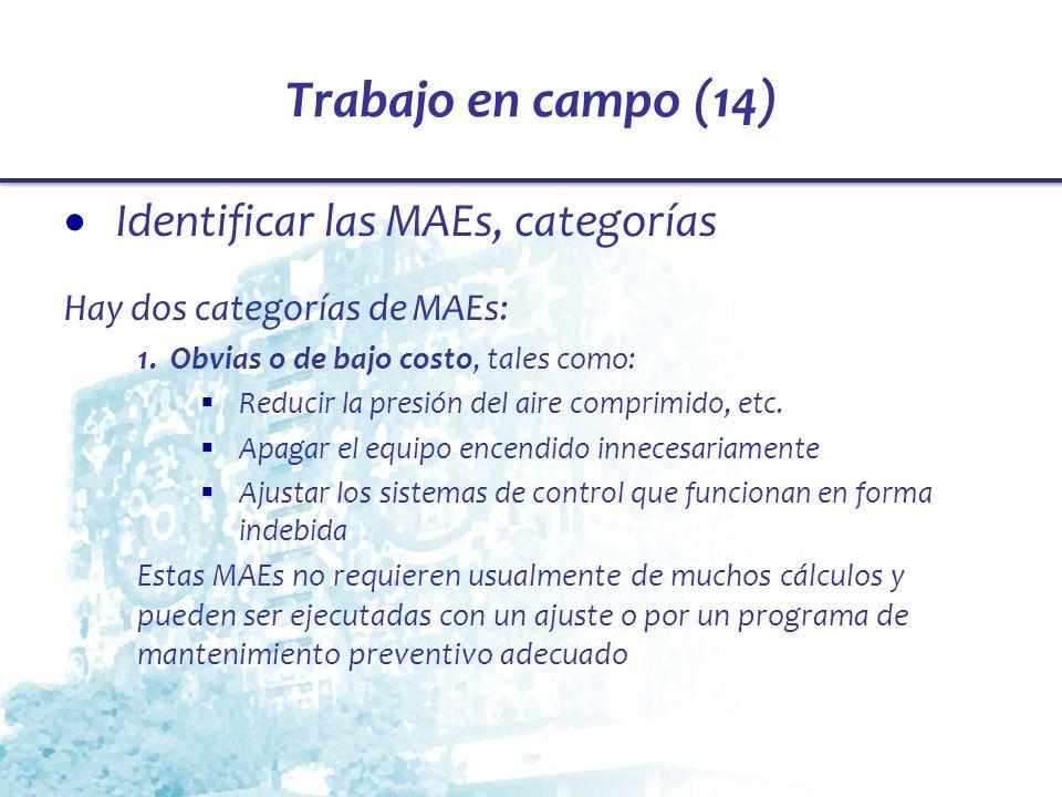 Trabajo en campo (14) Identificar las MAEs, categorías