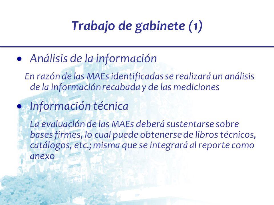 Trabajo de gabinete (1) Análisis de la información Información técnica