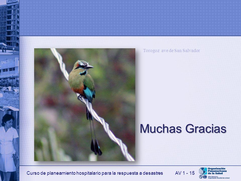 Muchas Gracias Torogoz ave de San Salvador AV 1 - 15