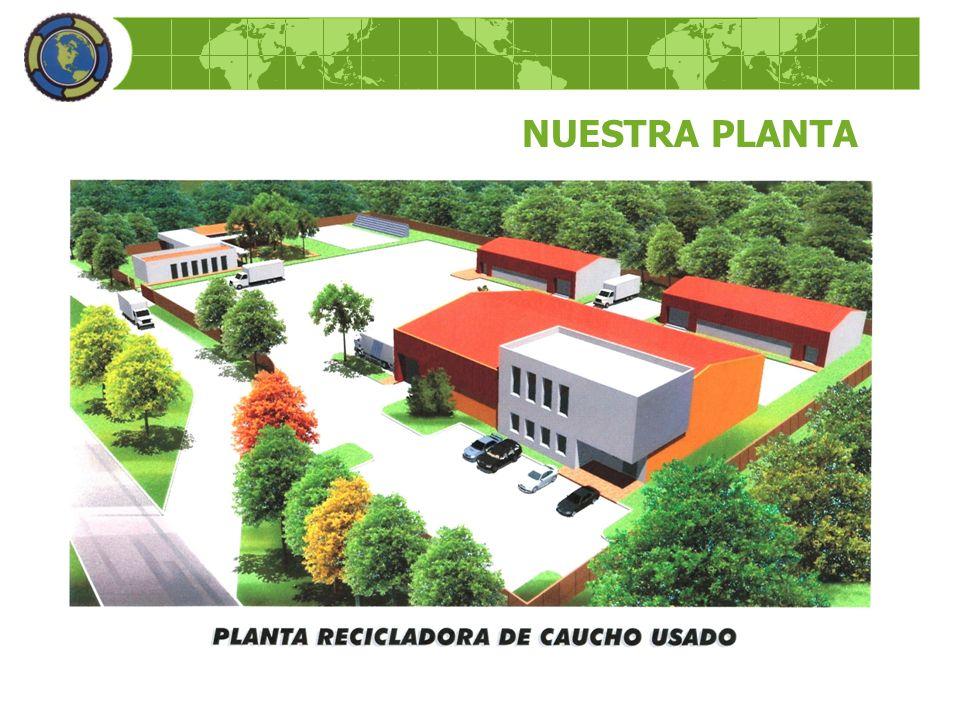NUESTRA PLANTA