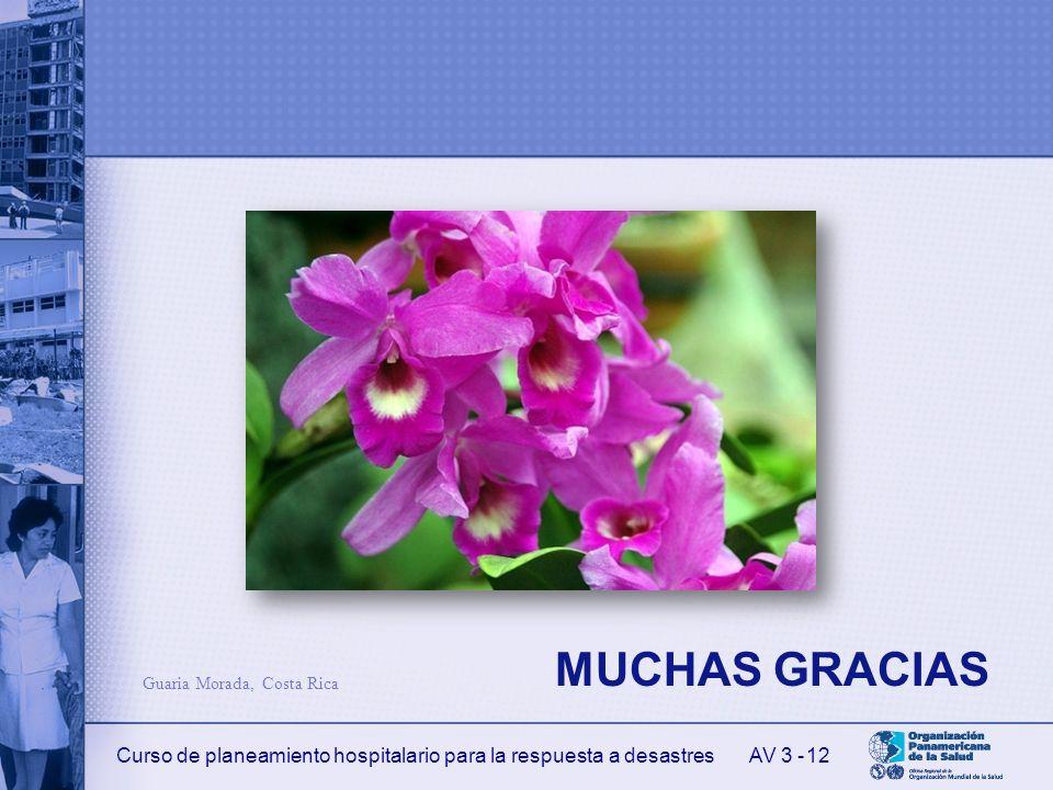MUCHAS GRACIAS Guaria Morada, Costa Rica AV 3 -