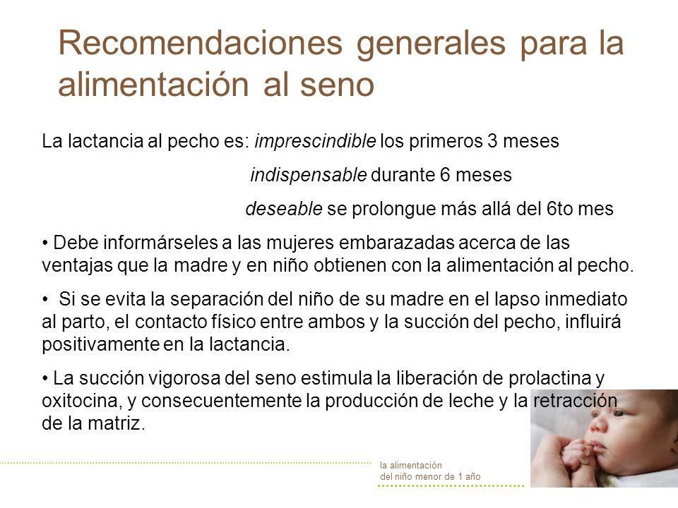 Recomendaciones generales para la alimentación al seno