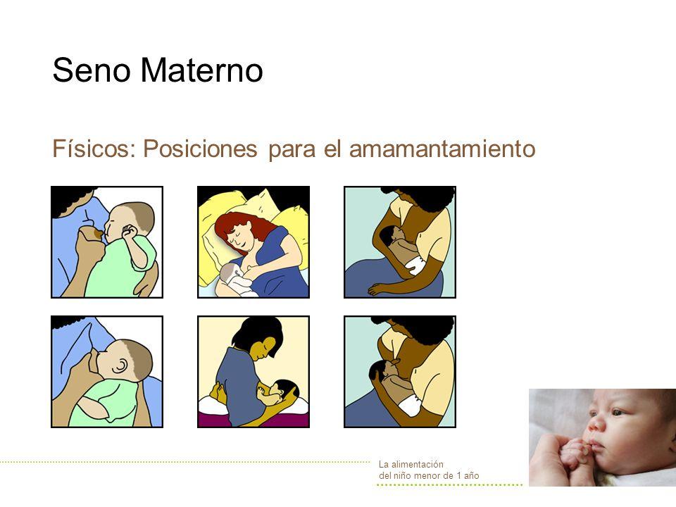 Seno Materno Físicos: Posiciones para el amamantamiento