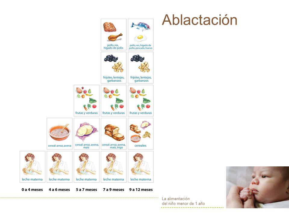 Ablactación La alimentación del niño menor de 1 año