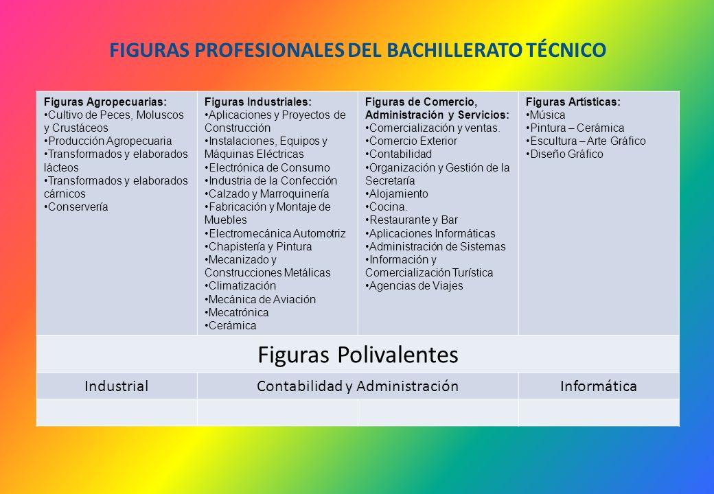 FIGURAS PROFESIONALES DEL BACHILLERATO TÉCNICO