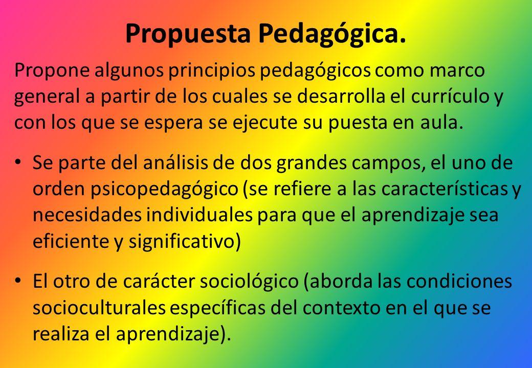 Propuesta Pedagógica.