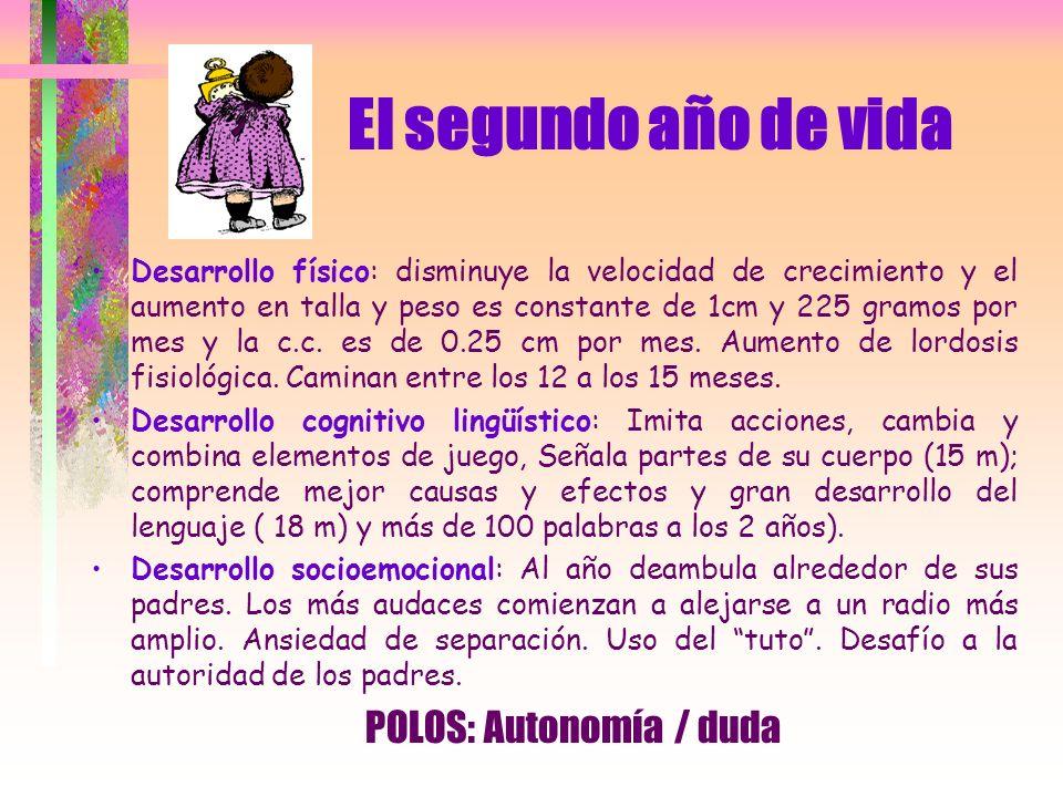 POLOS: Autonomía / duda