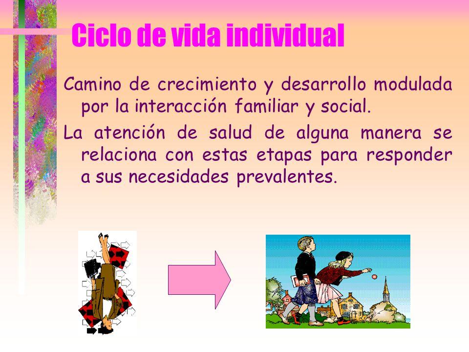 Ciclo de vida individual