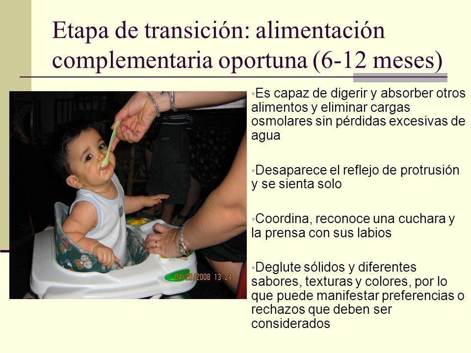 Etapa de transición: alimentación complementaria oportuna (6-12 meses)