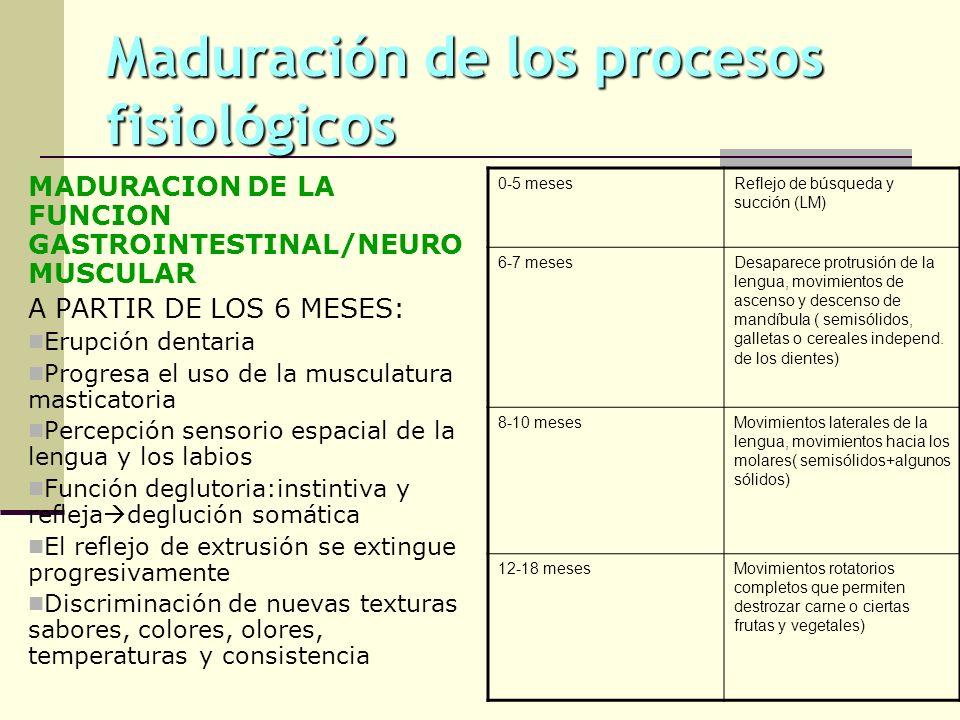 Maduración de los procesos fisiológicos
