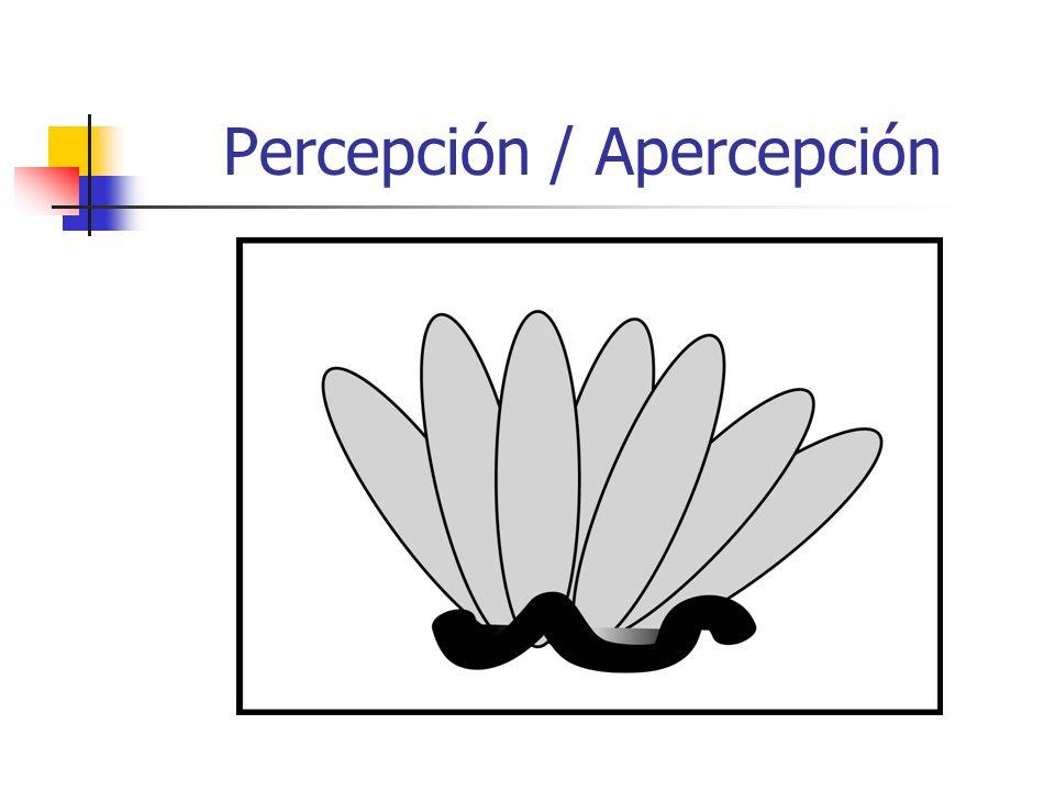 Percepción / Apercepción
